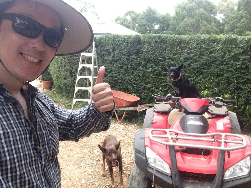 4輪バイクと犬