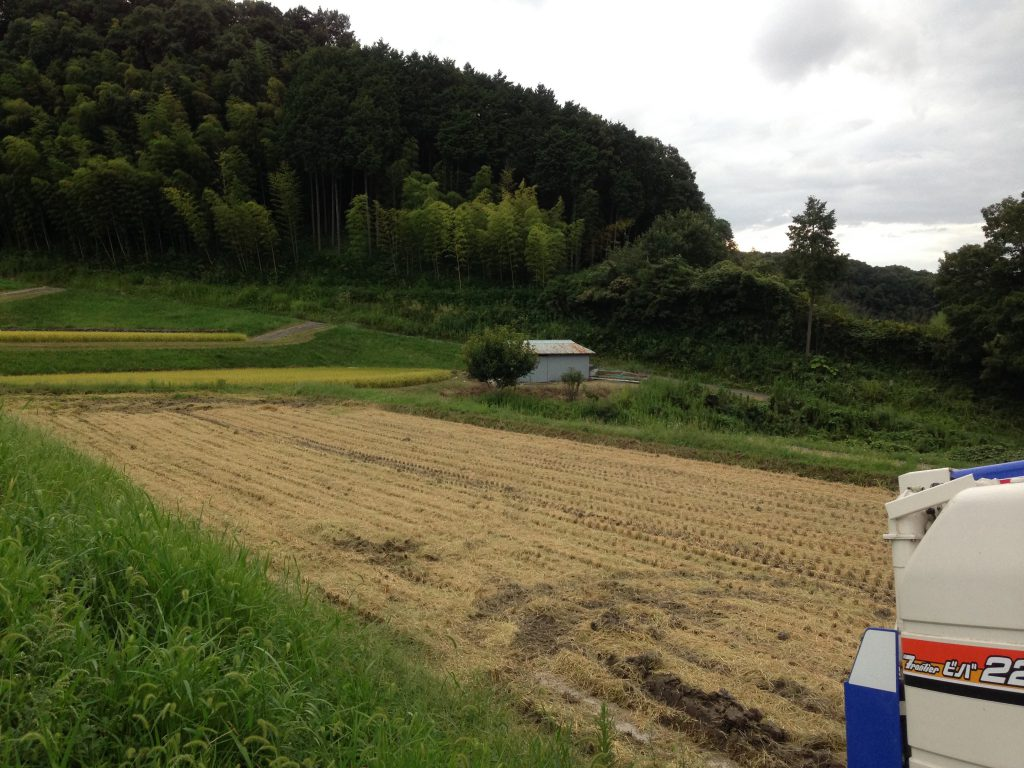 コシヒカリ収穫おわり