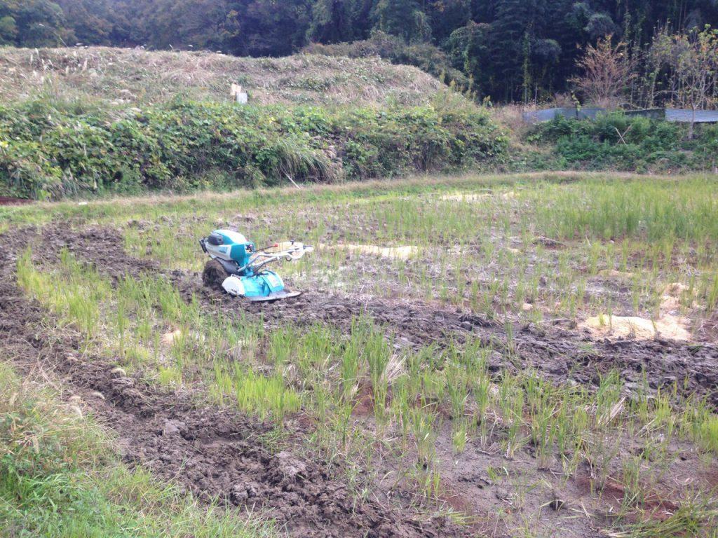 耕運機で秋耕起