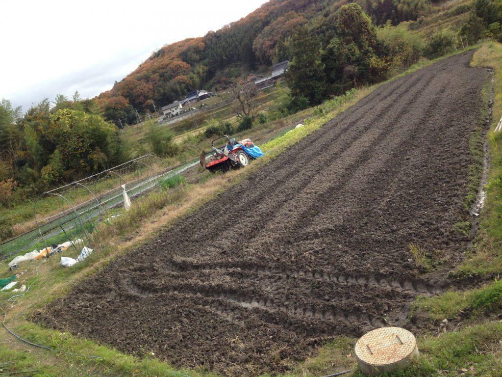 普段は古代米を作る田んぼ