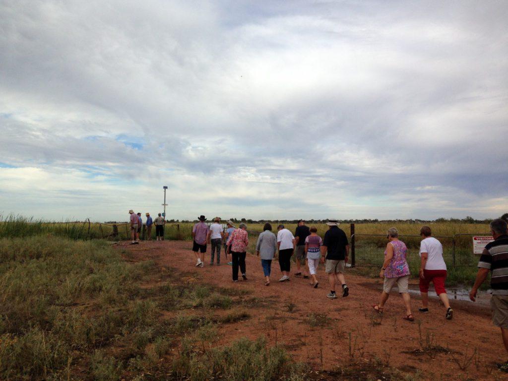 ツアー客がコシヒカリの田んぼを見学