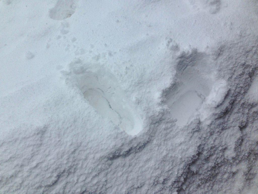 雪を踏んだ足跡