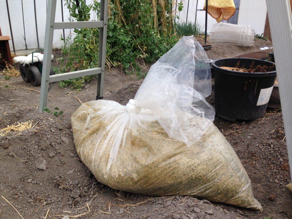 温室の中で発酵竹を作る