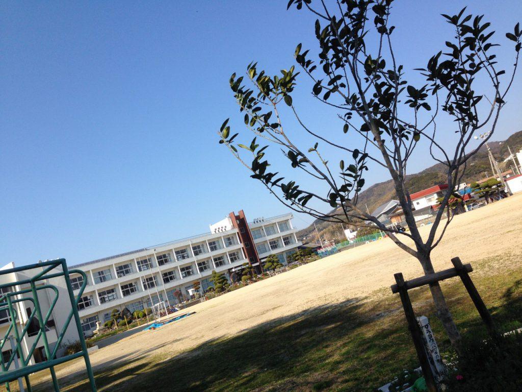 洲本市立都志小学校の記念樹