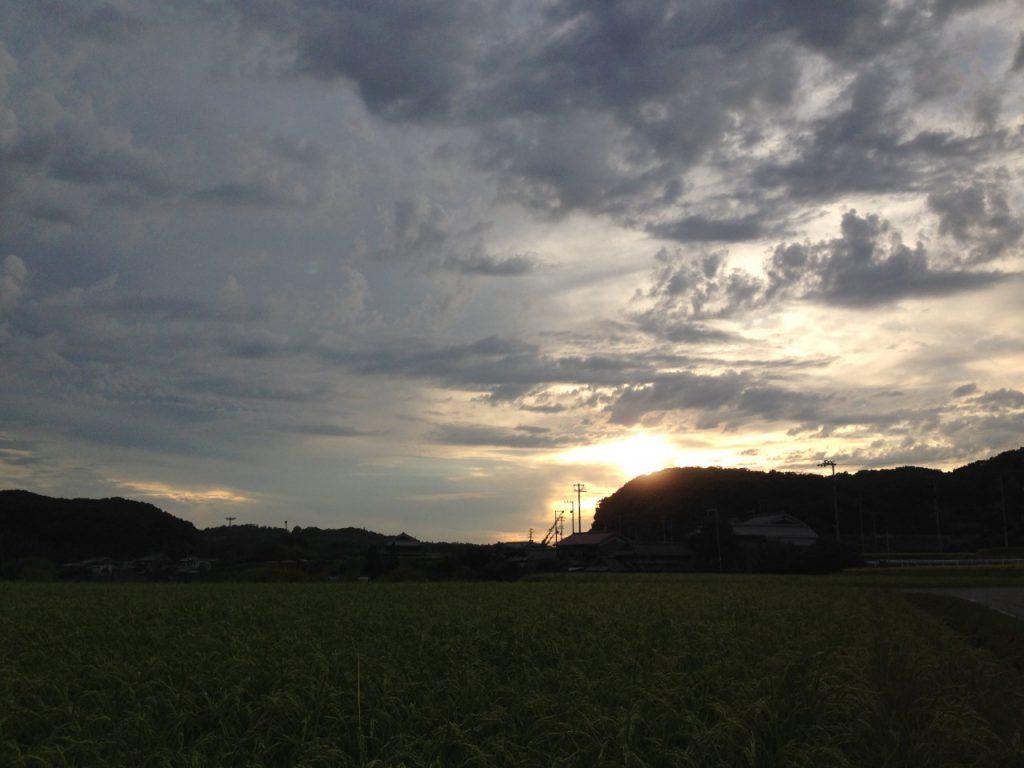 田んぼからみた夕日