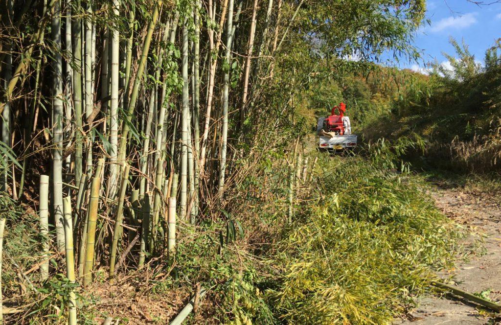竹パウダー作り