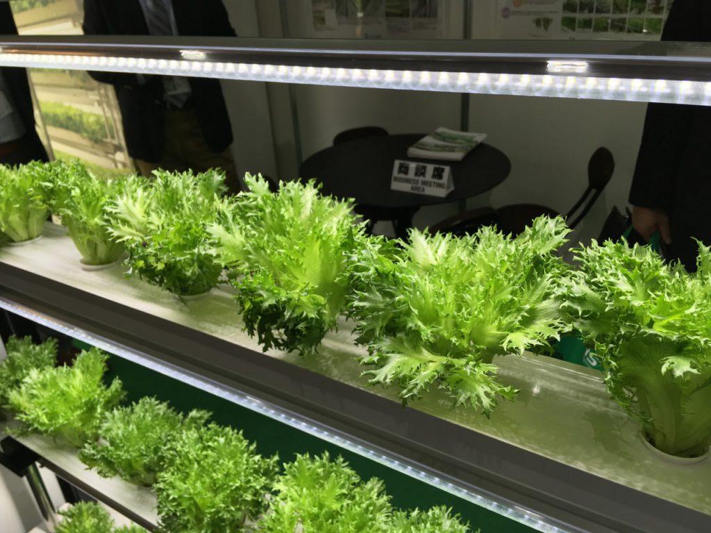 関西農業ワールド