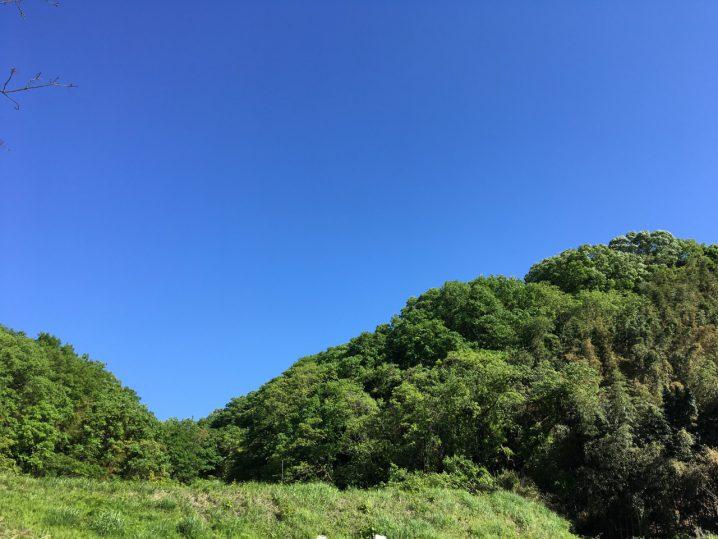 山の田んぼ