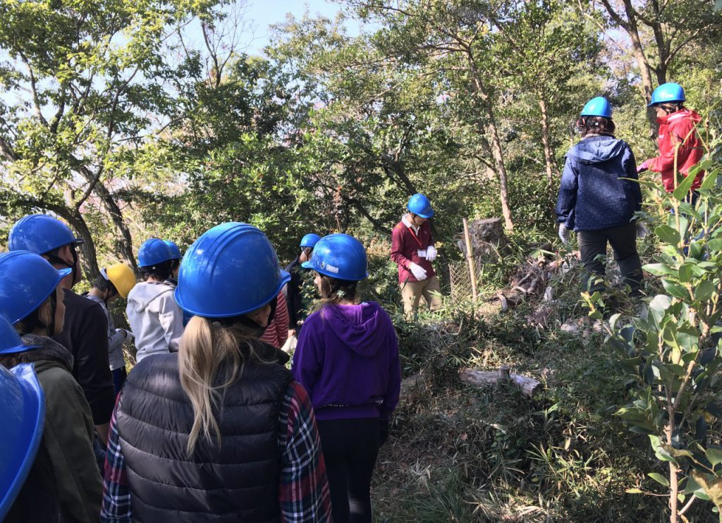 ピースアンドネイチャー 六甲の 森づくり 活動