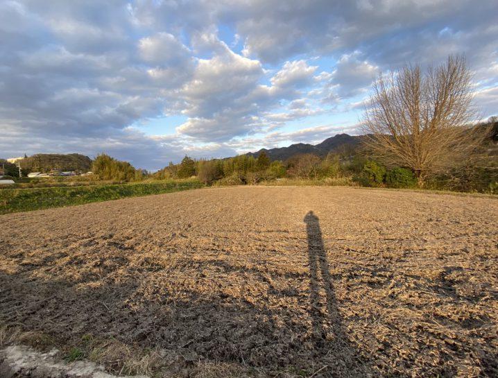 耕作放棄田を綺麗に耕す。